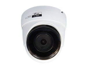 CO-RD21Pv2   Видеокамера IP купольная